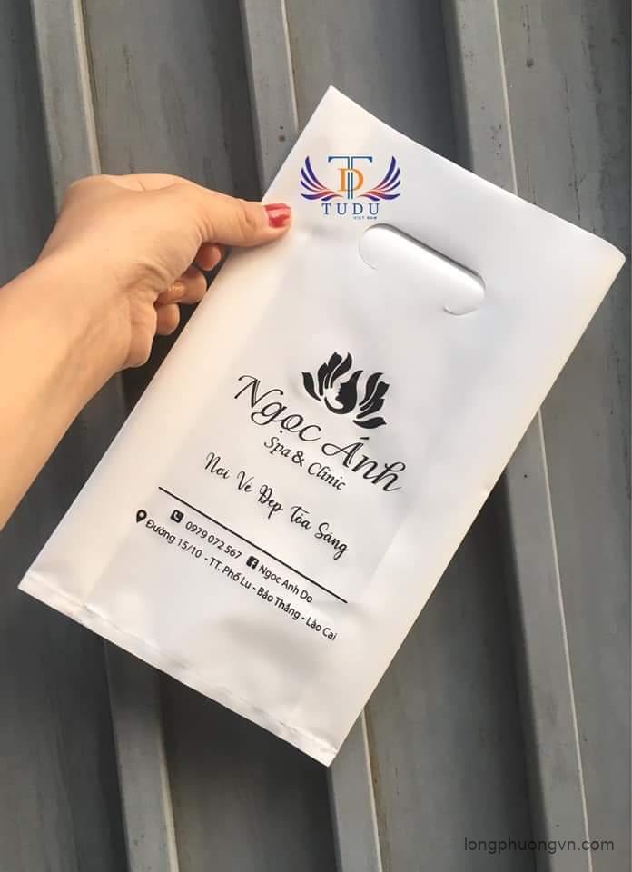Đặt in túi nilon giá rẻ, chất lượng tại In Long Phượng